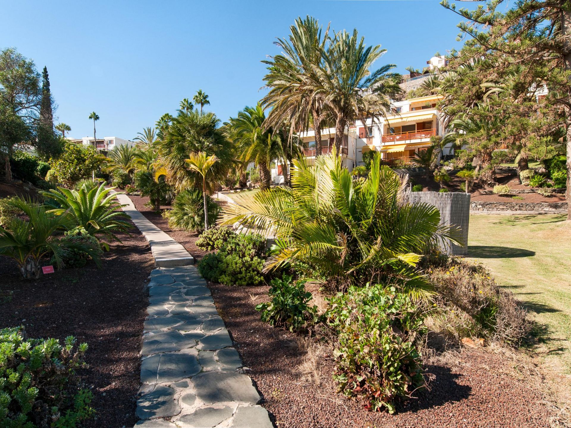 Holiday house Bungalow for 6 in San Agustin Rocas Rojas (2036934), Maspalomas, Gran Canaria, Canary Islands, Spain, picture 27